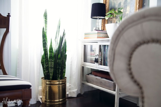 "Using greenery as a decor ""quick fix"""