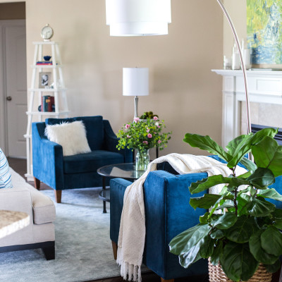 Client Project: A Light and Airy Open Concept Space